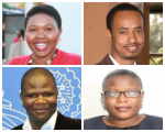 mwf 2015 fellows